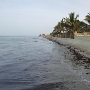 Projet : Elaboration d'une stratégie nationale de planification et de gestion urbaine au Sénégal