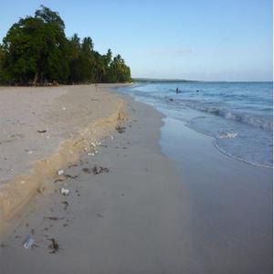 projets réhabilitation des plages de Ports-Salut_692x692