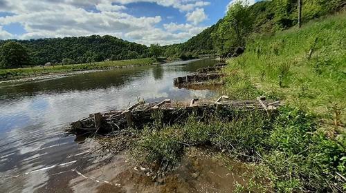 Actualité : restauration écologique sur l'Orne