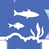 creocean biodiversite et protection des milieux_100x100